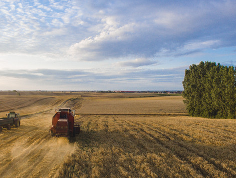 Як Розірвати Договір Оренди Землі | Адвокат По Земельним Питанням