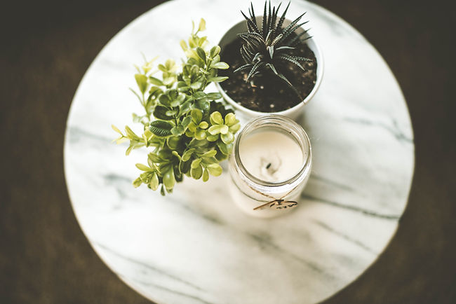 candles and plants