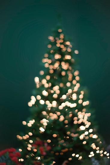 Christmas Murder Mystery (11-15 people)