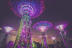 DEBRA Singapore