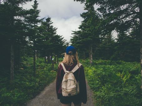 10 motivos para fazer um intercâmbio na Nova Zelândia