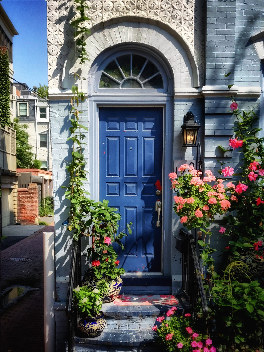 A blue front door with rose bushes around it.