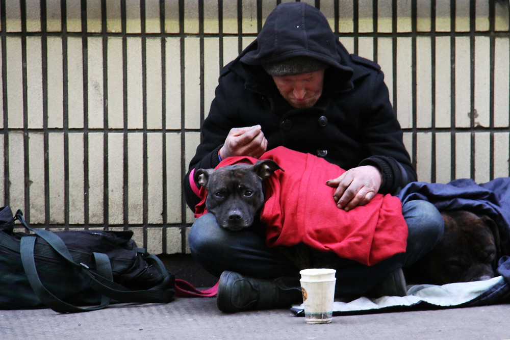 Homeless man with a dog asking from money