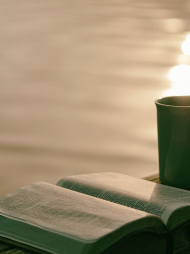 Let's chat over a cup of coffee or tea and put our ideas and plans into motion!