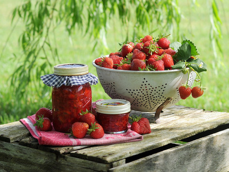 Strawberry Picking During a Pandemic