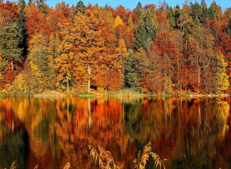Fall in Oklahoma City