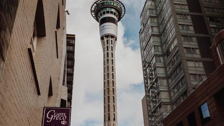 Chọn ngành nào khi du học New Zealand ?