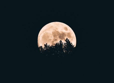 | Full Moon in Aries |
