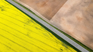 It's a Canola Crushing Showdown - Cargill is Also Planning a $350M Facility in Regina