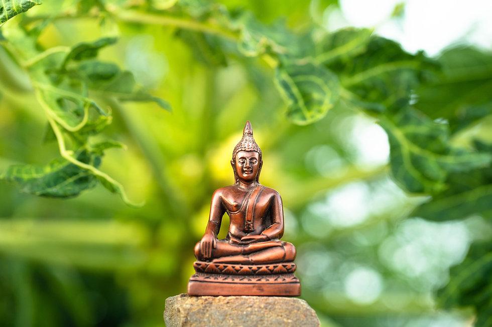 Image de Shanthi Raja