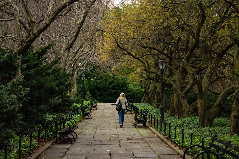 Solo person walking in a park