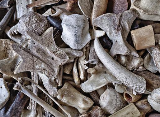 Can These Bones Live? (Sermon)
