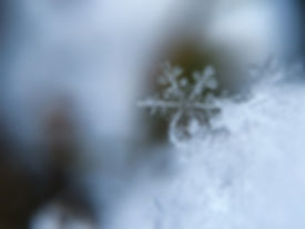 Winter eyecare