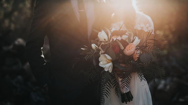 Wedding Festivals Show
