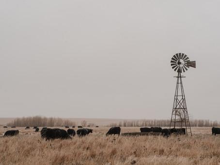 Acquiring a Kansas Apostille