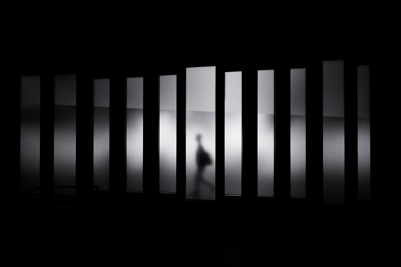 Image by David Werbrouck