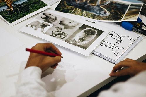 Drawing for Portfolio