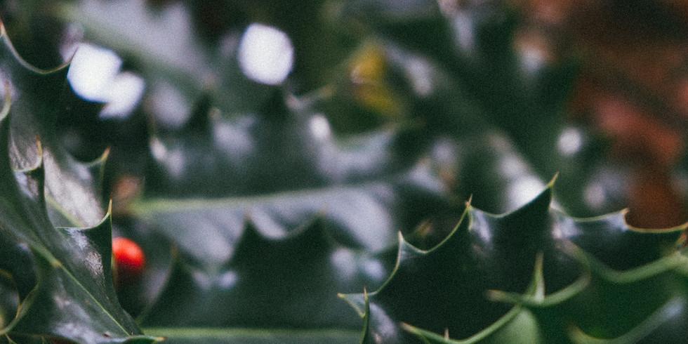Weihnachtlicher Türkranz im Genuss Garten Bingen
