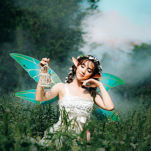 Fairy Dream Bed Time Blend