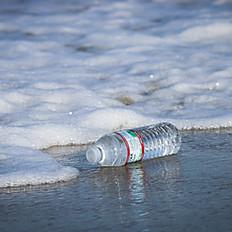 Bottled Water - 16oz