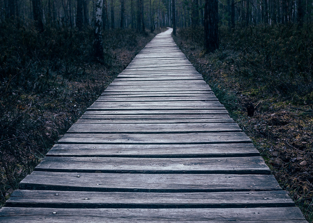 Embrace all the new paths in life since it is all taking you exactly where you need to go so follow the positive omens and take the negative omens as a warning to proceed with caution.