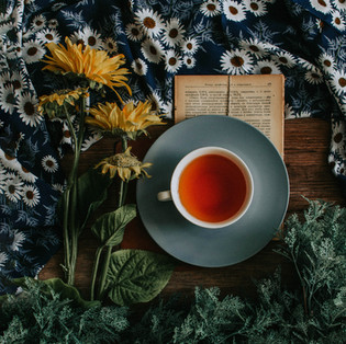 Herbal Tea, Herbal Decoction, and Herbal Infusion: What are the differences?