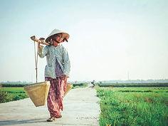 Maya vietnam