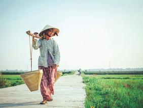 Image by Hưng Nguyễn Việt