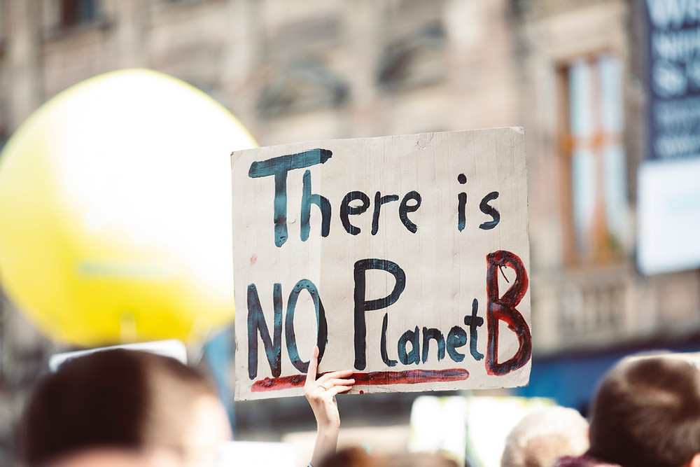 """A climate protestor holds up a sign that says, """"There is no Planet B."""""""
