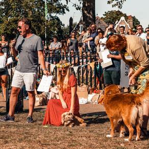 Sve što trebate znati o izložbama pasa