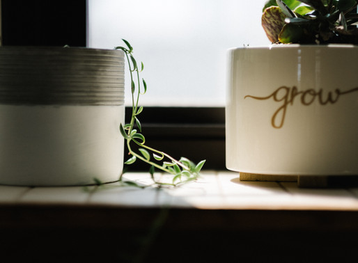 To Make or To Grow