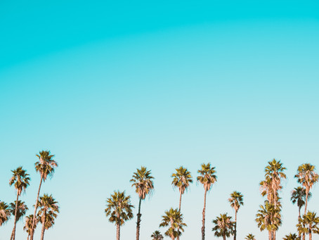 4 Easy Steps to Start Studying English in Los Angeles