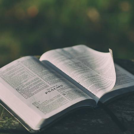 Faith & Life: Feeding Your Spirit and Not Your Flesh