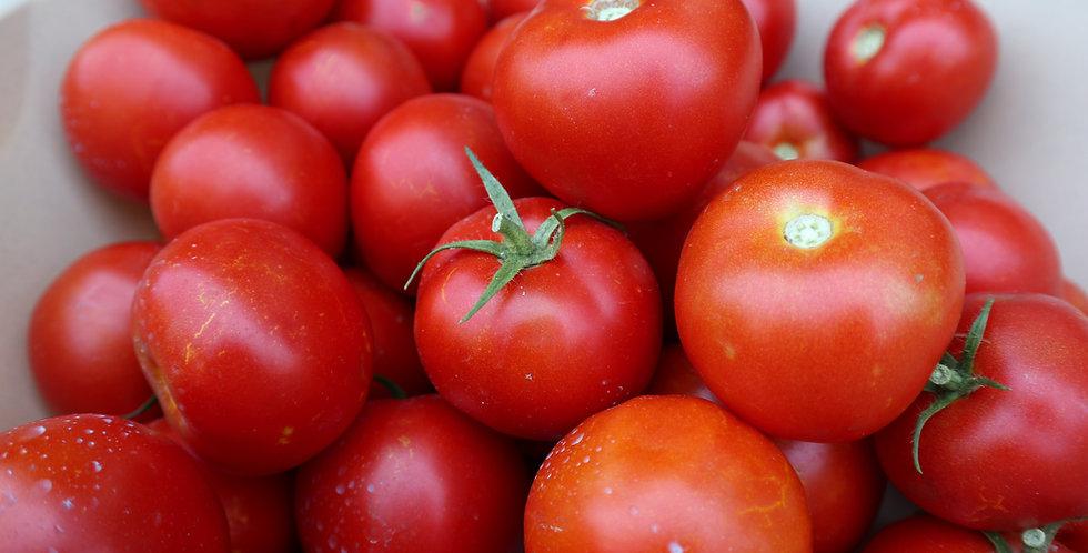 Midsize Tomato- Moskvich