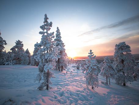 Évasion en Laponie suédoise : les incontournables à découvrir