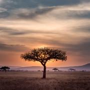 ETIOPIA - Morto padre Paolo Angheben, una vita spesa come missionario in Etiopia