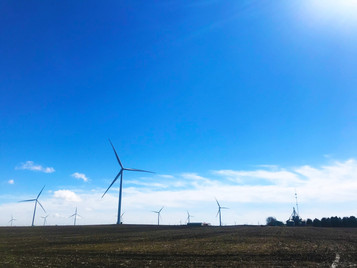 Should governments or nonprofits fund decarbonization projects?