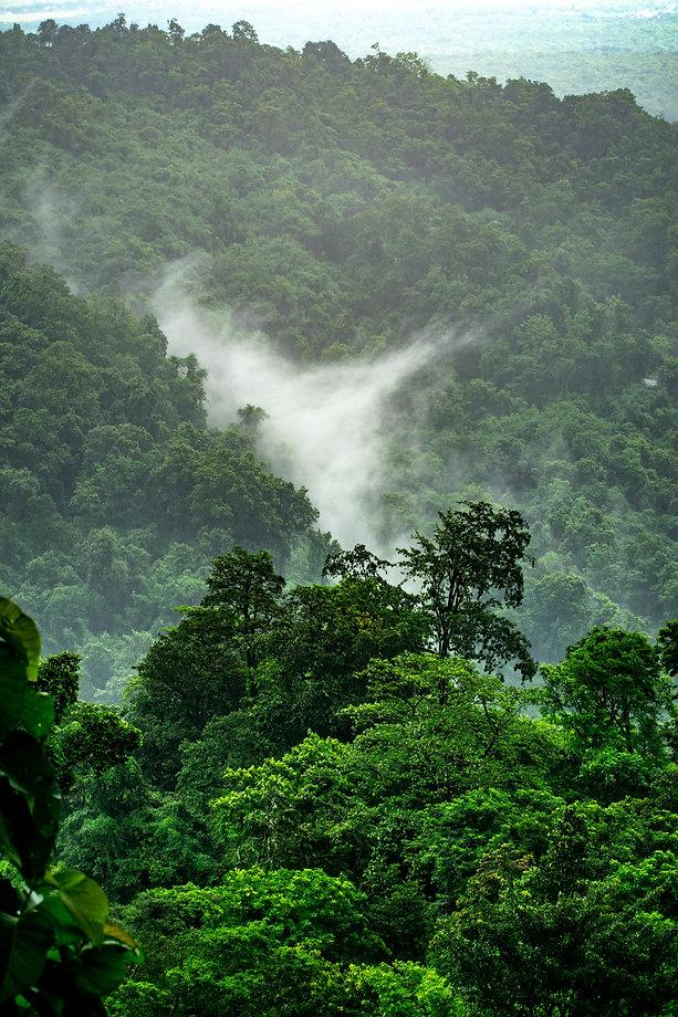 Image by Boudhayan Bardhan