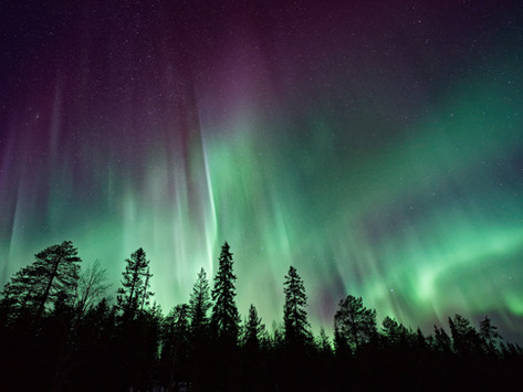LAPLAND, ALL THE REASONS TO VISIT THE NORTH