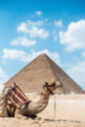 15 dias Circuito de Turquia y Egipto