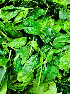 Spinach, raw