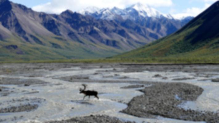 Lugares que ver en Alaska
