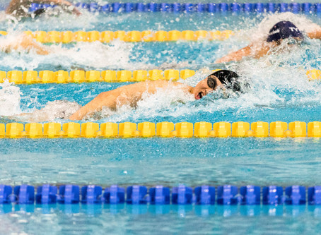 تحليل أداء السباحة للمدربين                        النموذج القطعي – سباحة الحرة