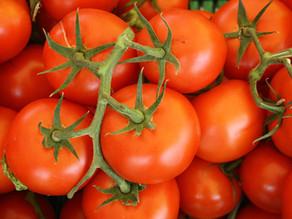 男女健康聖品——茄紅素