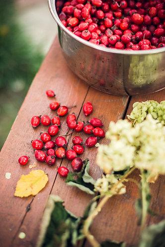 Cranberry Body Wash