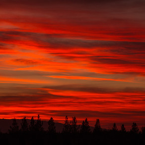 Under a Blood Red Sky by Maria S. Nitsolas