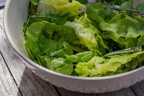 Spring Mix Lettuce Greens