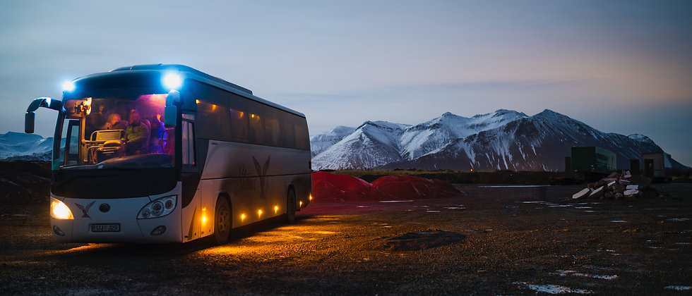 Party Bus for Up to 12 or 15 People with Refreshments and Snacks from Rogue Life