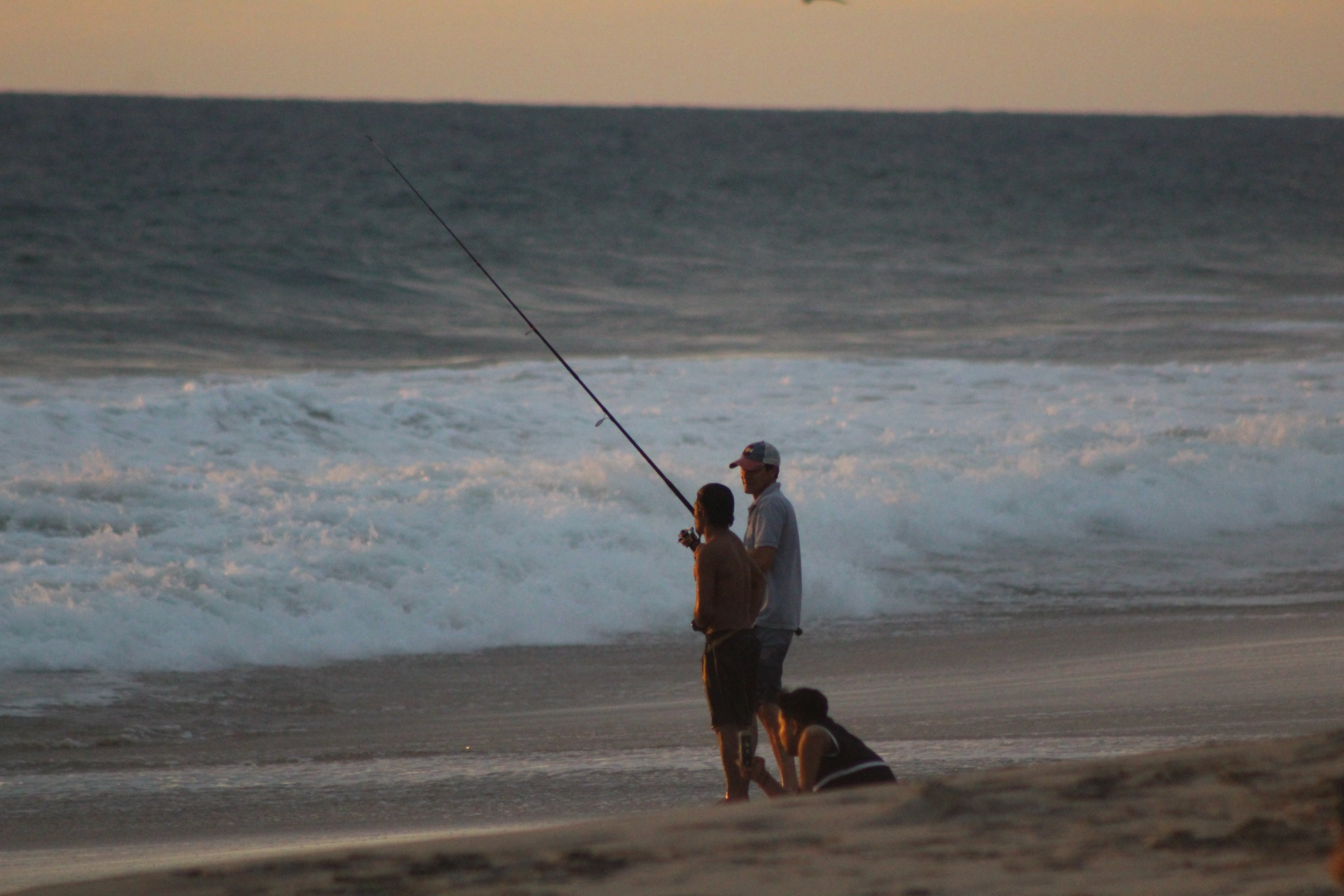 Attività di Pesca - Report