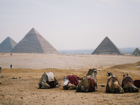80 Belgian Egyptologists and a missing El Kab